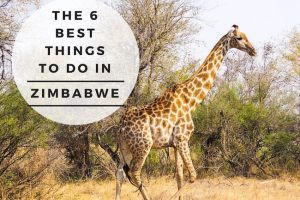 The 6 Best Things to Do in Zimbabwe