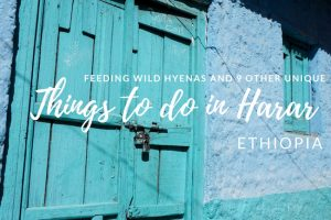 Feeding Wild Hyenas and 9 Other Unique Things to do in Harar, Ethiopia