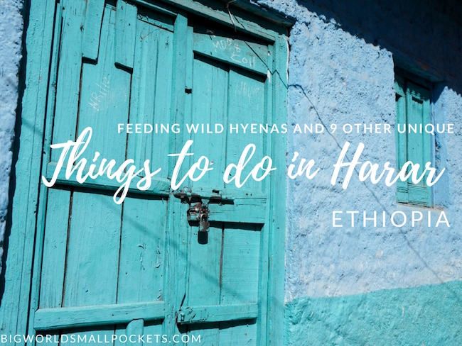 Feeding Wild Hyenas and 9 Other Unique Things to do in Harar