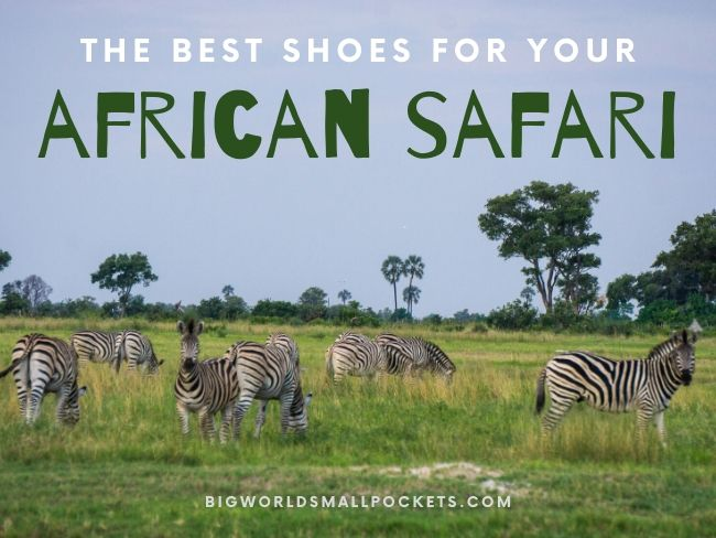 Best Safari Shoes