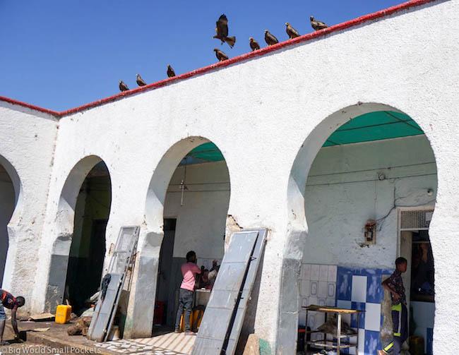 Ethiopia, Harar, Gidir Magala