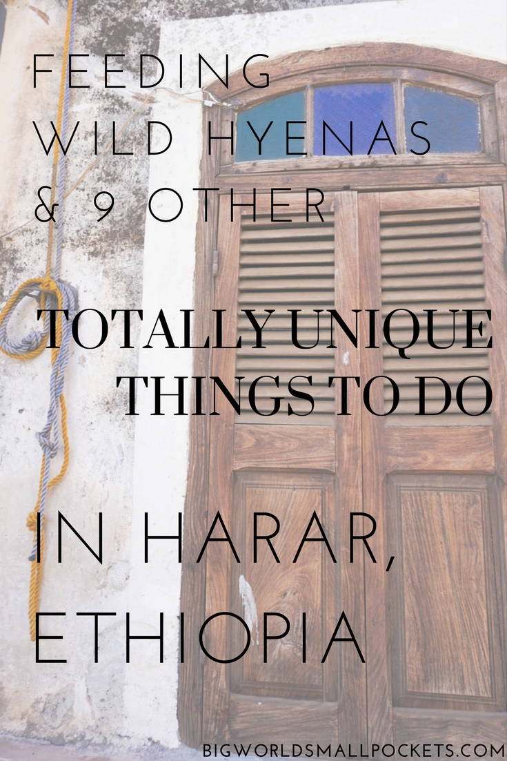 Feeding Wild Hyenas and 9 Other Unique Things to Do in Harar, Ethiopia {Big World Small Pockets}