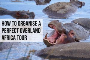 How to Organise the Perfect Overland Africa Tour