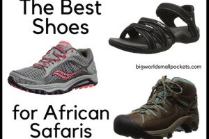 The Best Shoes for African Safari