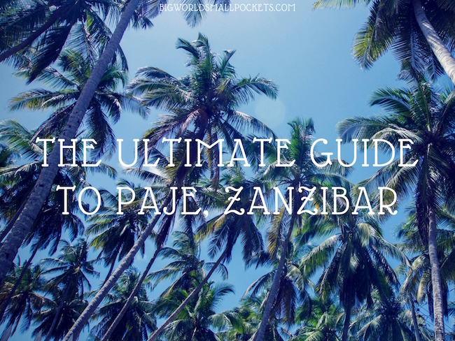 The Ultimate Guide to Paje, Zanzibar