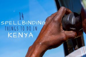 14 Spellbinding Things to do in Kenya That Will Make You Book a Trip There Today!