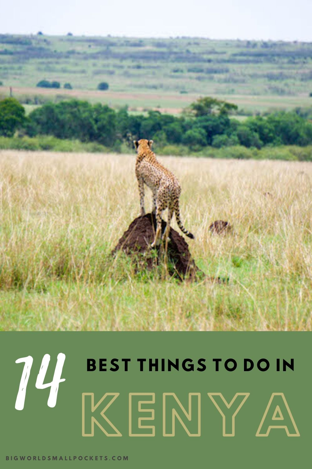 14 Top Things To Do When You Travel in Kenya