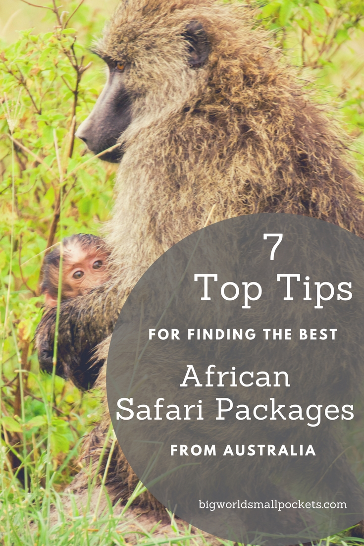 7 Top Tips for Finding the Best African Safari Packages from Australia {Big World Small Pockets}