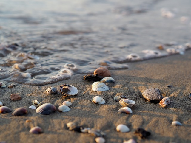 Italy, Bibione, Beach