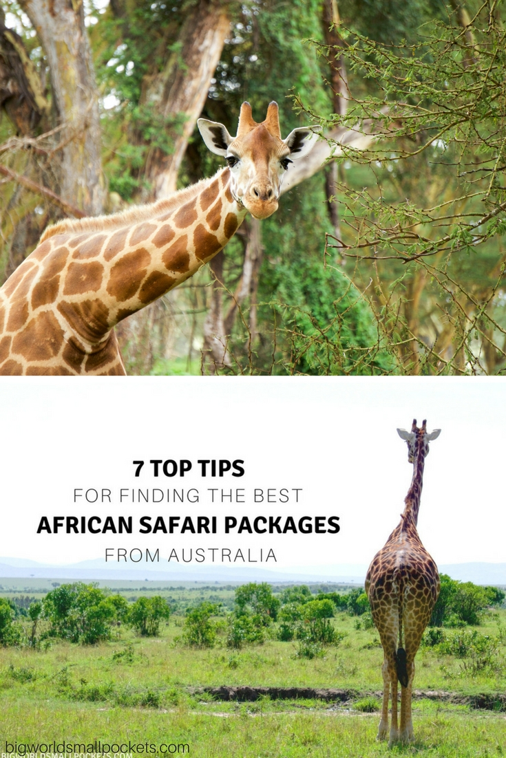 My 7 Top Tips for Finding the Best African Safari Packages from Australia {Big World Small Pockets}