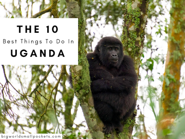 The 10 Best Things To Do in Uganda