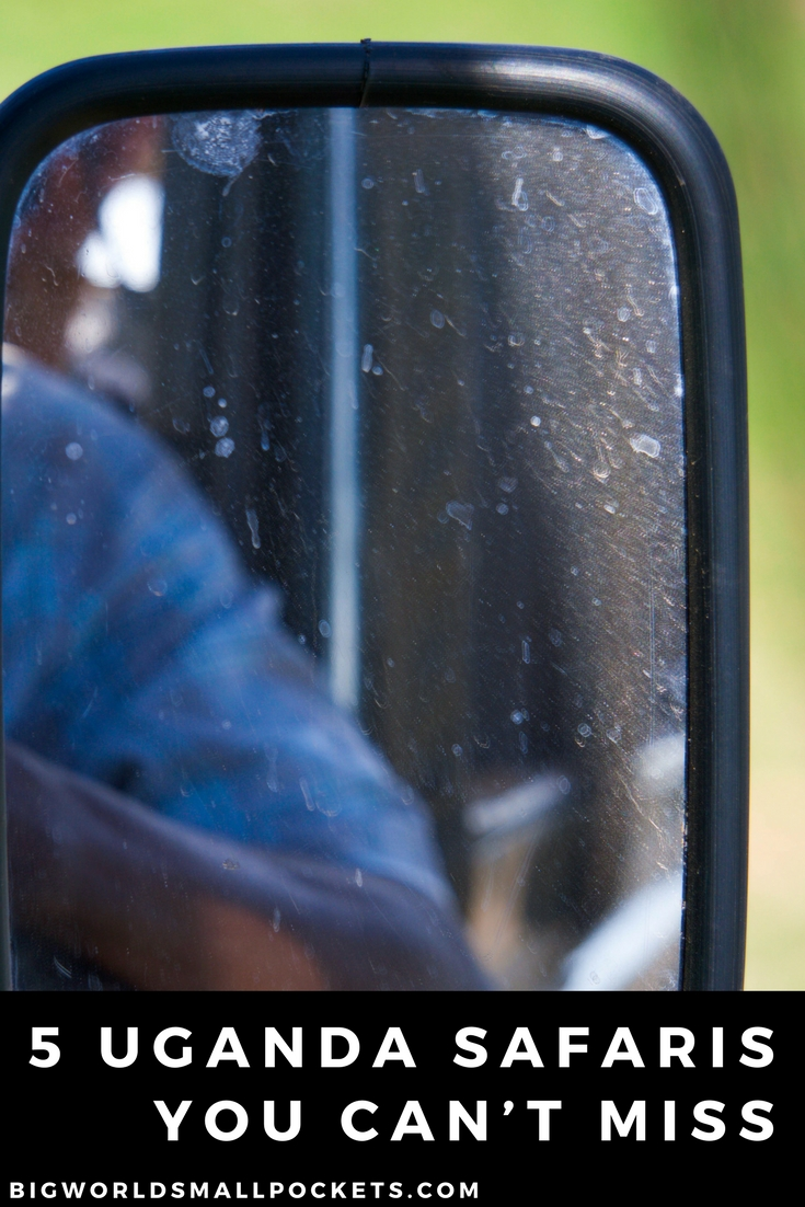 The 5 Uganda Safaris You Can't Miss {Big World Small Pockets}