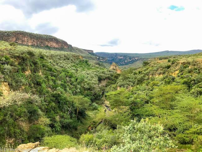 Kenya, Hells Gate NP, Lookout