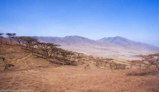 Tanzania, Serengeti, Views