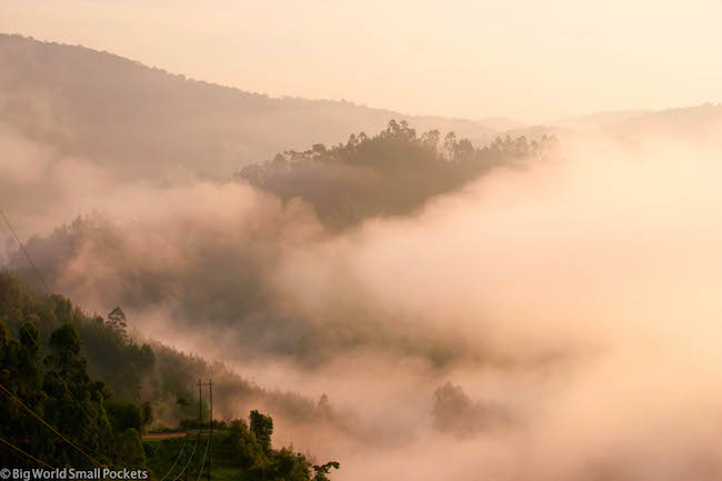 Uganda, Bwindi, Sunrise