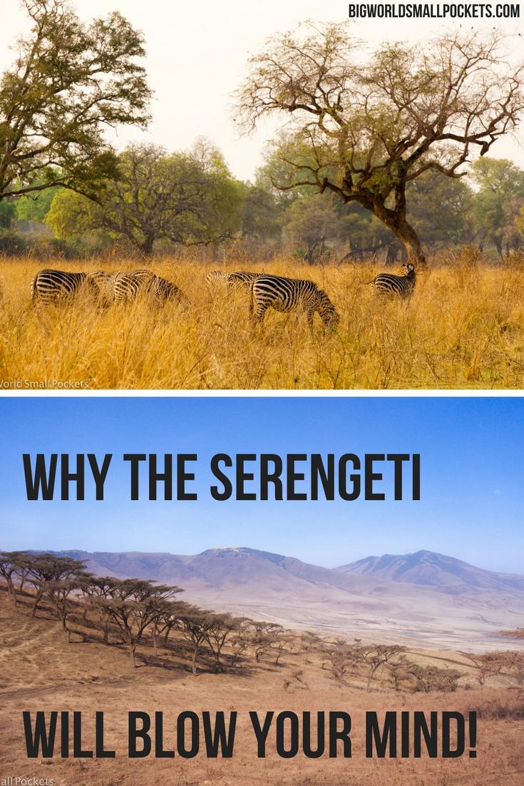Why Tanzania's Serengeti National Park is Mind Blowing! {Big World Small Pockets}