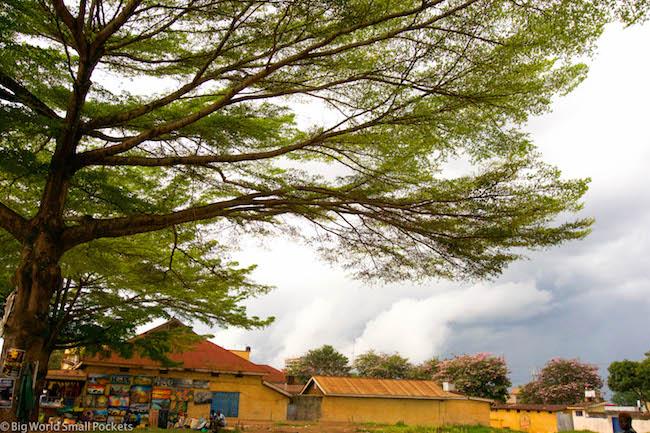 Uganda, Jinja, Rooftops