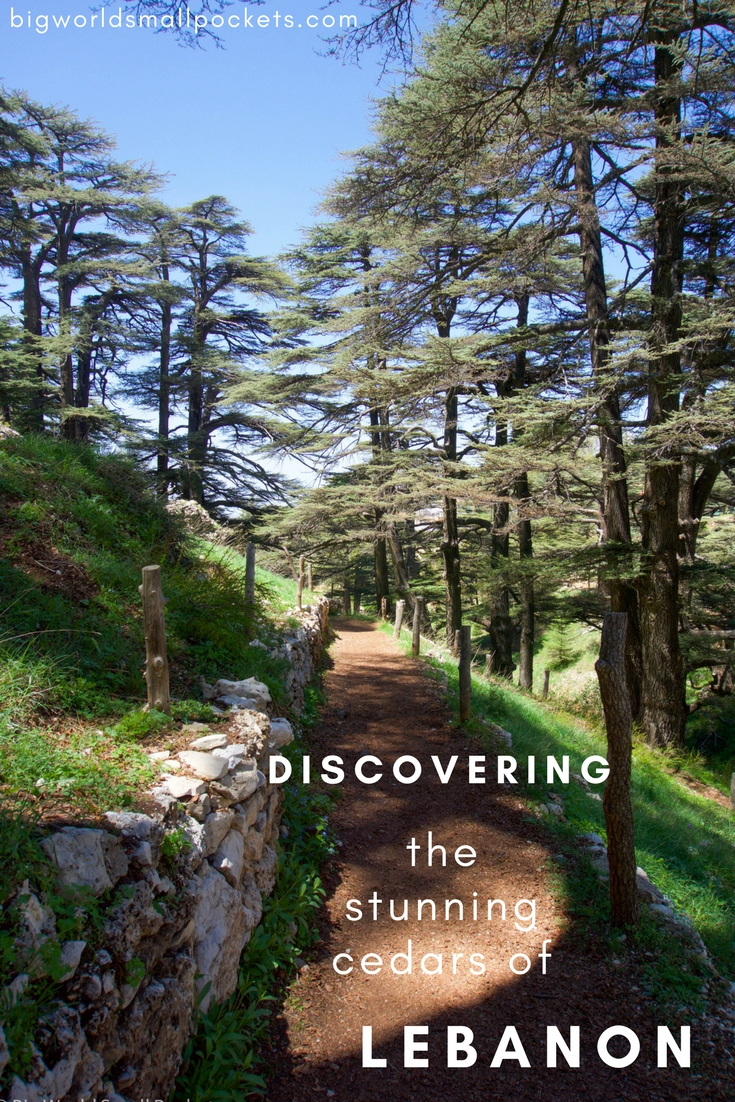 Discovering the Stunning Cedars with Explore Lebanon Tours {Big World Small Pockets}