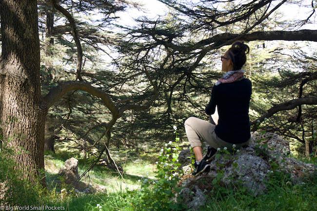 Lebanon, Cedars, Me Sitting