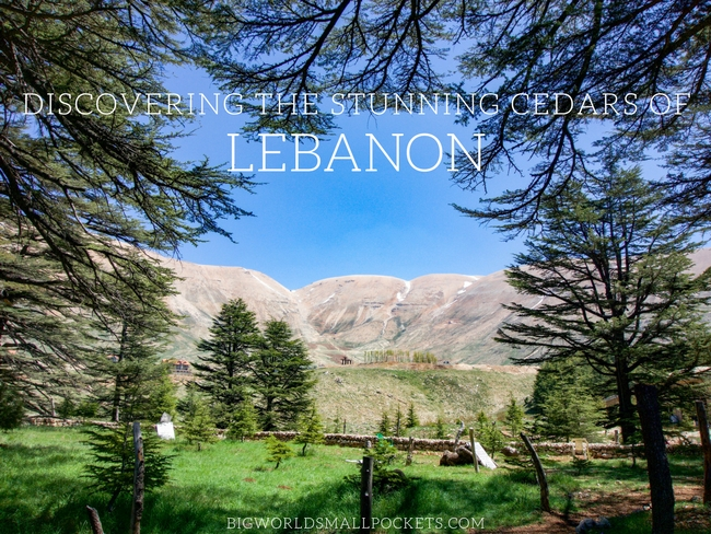 Lebanon Tours to the Cedars