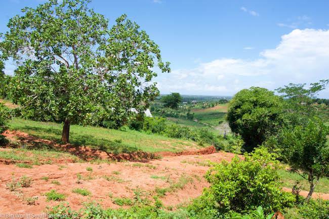 Africa, Rwanda, Landscape