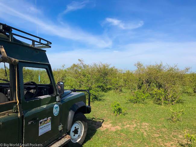 Kenya, Masai Mara, Safari