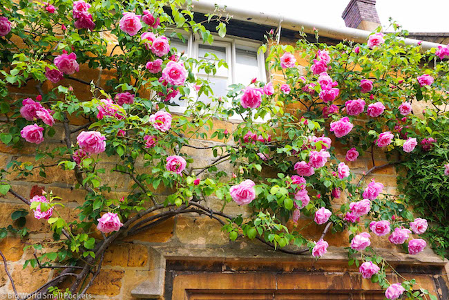 UK, Cotswolds, Rose Cottage