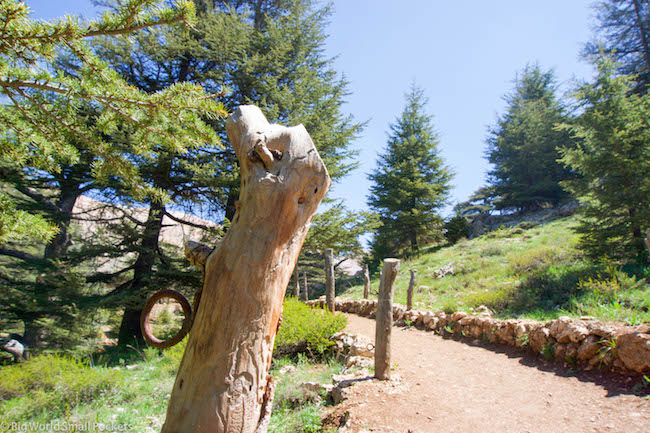 Lebanon, Cedars, Reserve Trail