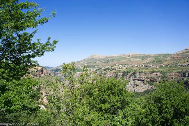 Lebanon, Cedars, View