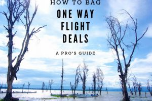How to Bag One Way Flight Deals : A Pro's Guide