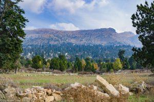 Lebanon, Aakkar, Amousa