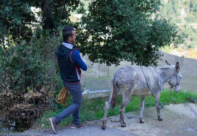 Lebanon, Aakkar, Man and Donkey