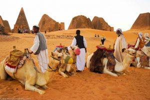Sudan. Meroe, Camels