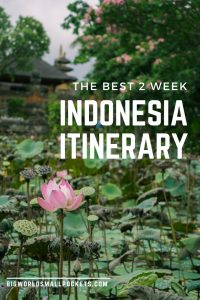 The Ultimate 2 Week Indonesia Itinerary {Big World Small Pockets}