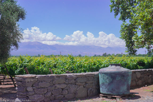 Argentina, Cafyate, Winelands