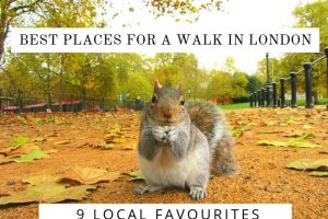 Best Places for a Walk in London : 9 Local Favourites