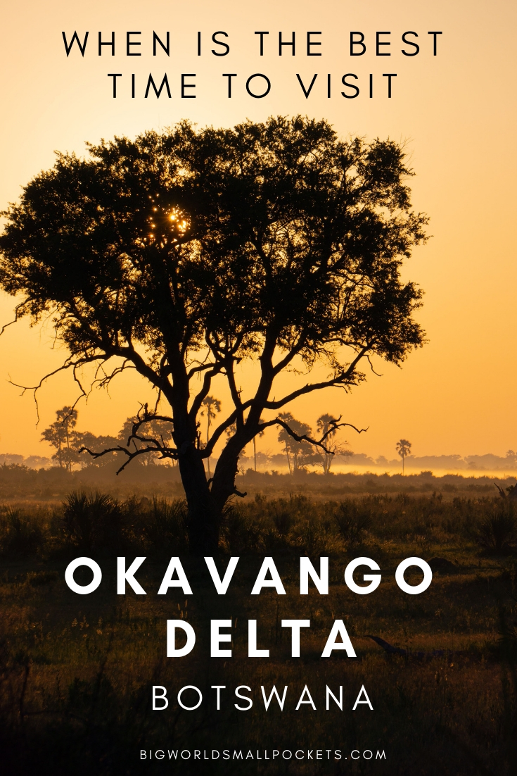 Complete Guide to Visiting the Okavango Delta, Botswana {Big World Small Pockets}