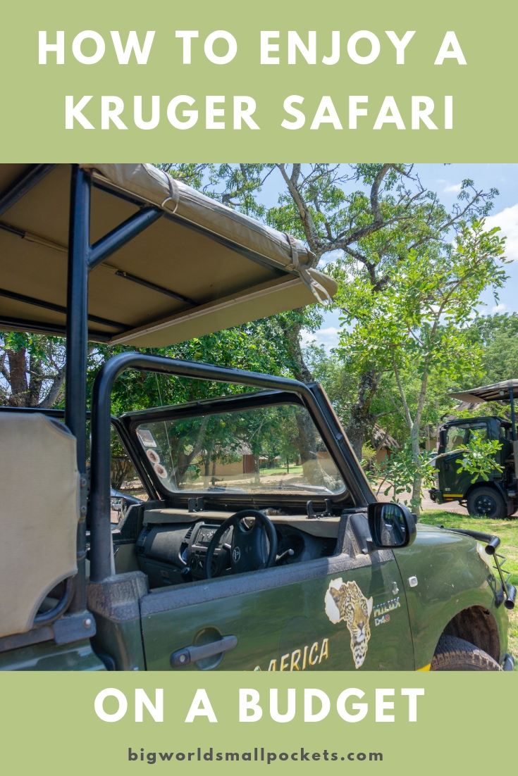 How to Enjoy a Kruger National Park Safari for Cheap! {Big World Small Pockets}