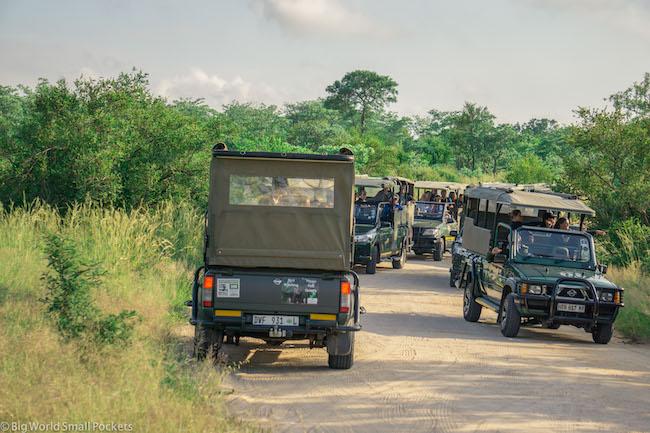 South Africa, Kruger, Safari