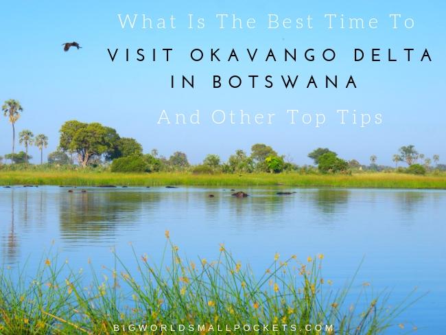 When is the Best Time to Visit Okavango Delta