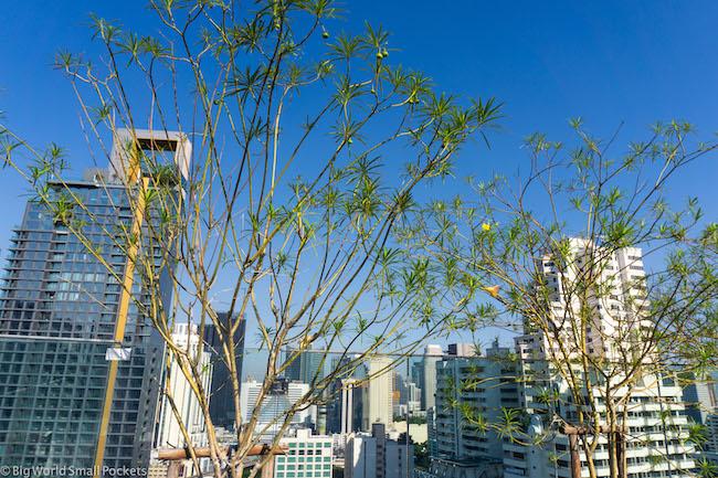 Bangkok, Ibis Styles Sukhumvit 4, Rooftop