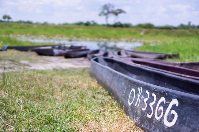 Botswana, Okavango Delta, Canoe