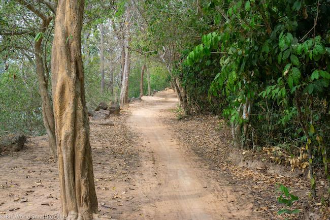 Cambodia, Angkor Wat, Bike Tracks