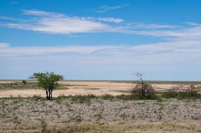 Namibia, Etosha, Flat Landscape
