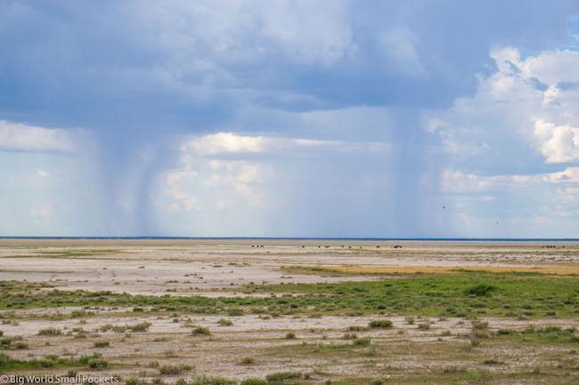 Namibia, Etosha, Landscape