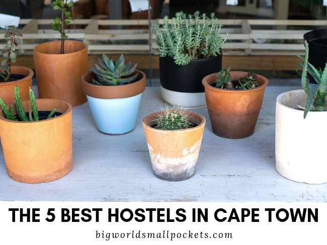 The 5 Best Hostels in Cape Town