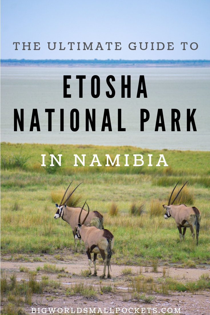 The Ultimate Guide to Etosha National Park {Big World Small Pockets}
