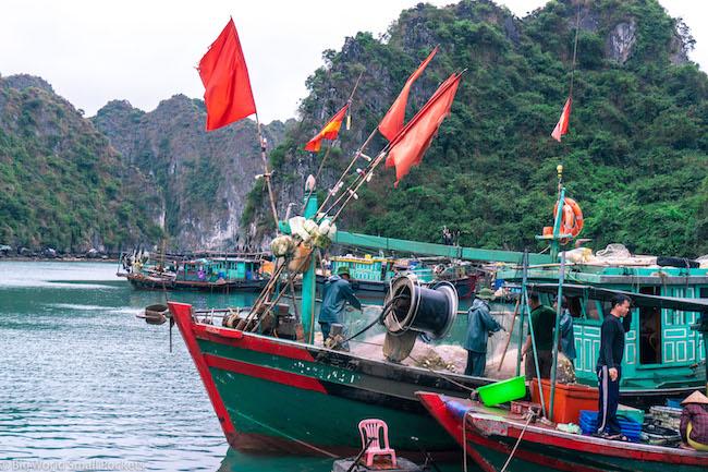Vietnam, Cat Ba lsland. Boats