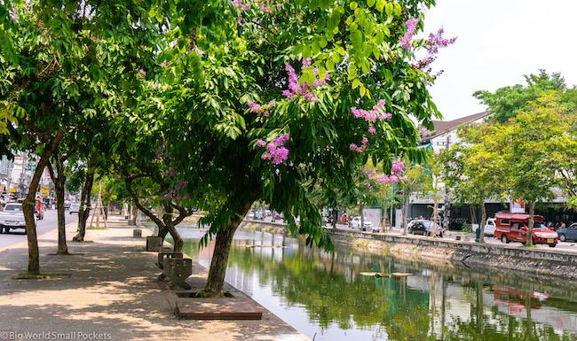 Thailand, Chiang Mai, Moat