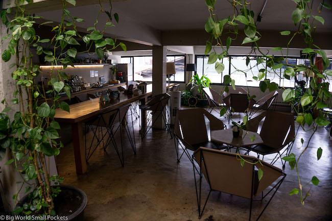 Thailand, Chiang Mai, Thunder Bird Hostel Communal Area